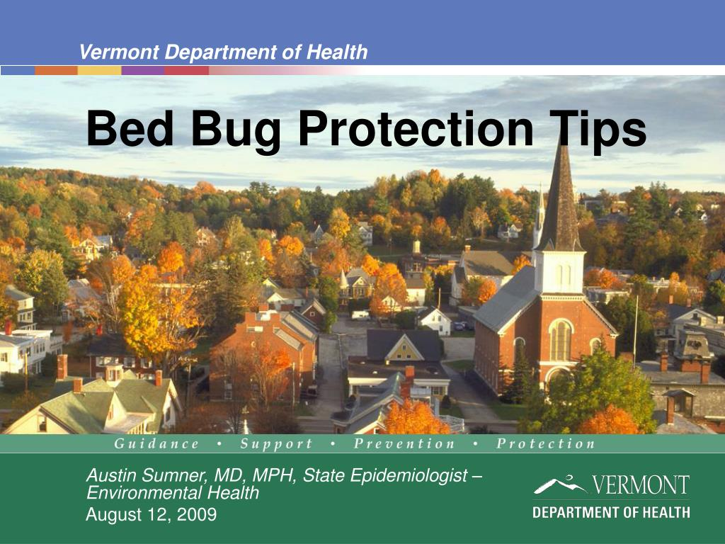 bed bug protection tips l.