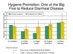 hygiene promotion one of the big five to reduce diarrheal disease