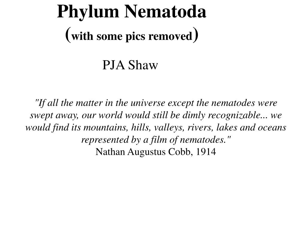 phylum nematoda with some pics removed l.