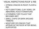 visual inspections roof rib