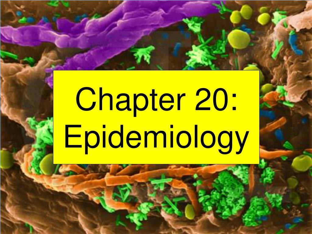 chapter 20 epidemiology l.