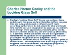 charles horton cooley and the looking glass self