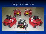 cooperative robotics29