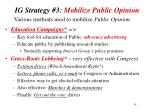 ig strategy 3 mobilize public opinion