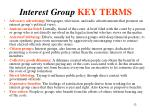 interest group key terms