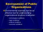 environment of public organizations