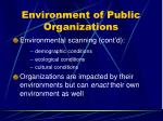 environment of public organizations26