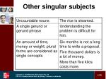 other singular subjects