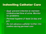 indwelling catheter care