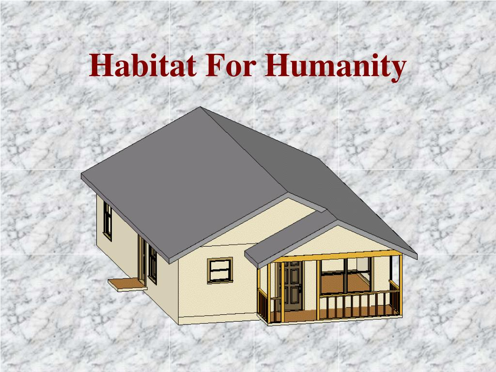 habitat for humanity l.