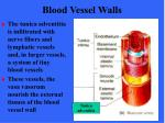 blood vessel walls12