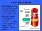 blood vessel walls9