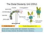 the distal dexterity unit ddu