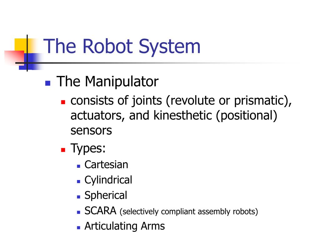 The Robot System