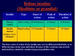 bolous insulins mealtime or prandial13