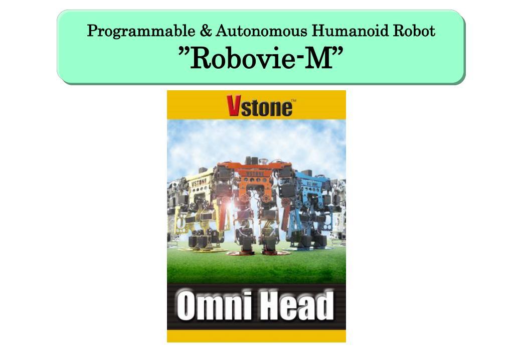 Programmable & Autonomous Humanoid Robot