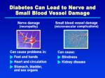 diabetes can lead to nerve and small blood vessel damage