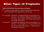 other types of fragments21
