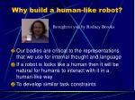 why build a human like robot