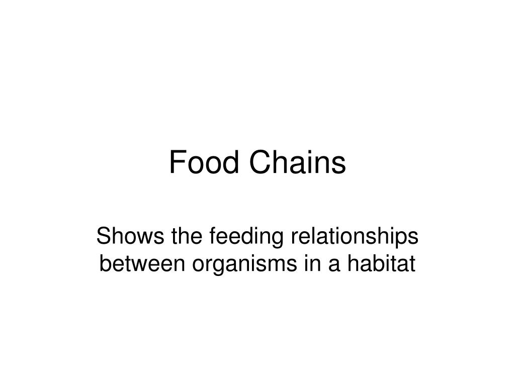food chains l.