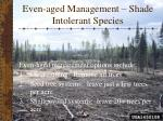even aged management shade intolerant species16