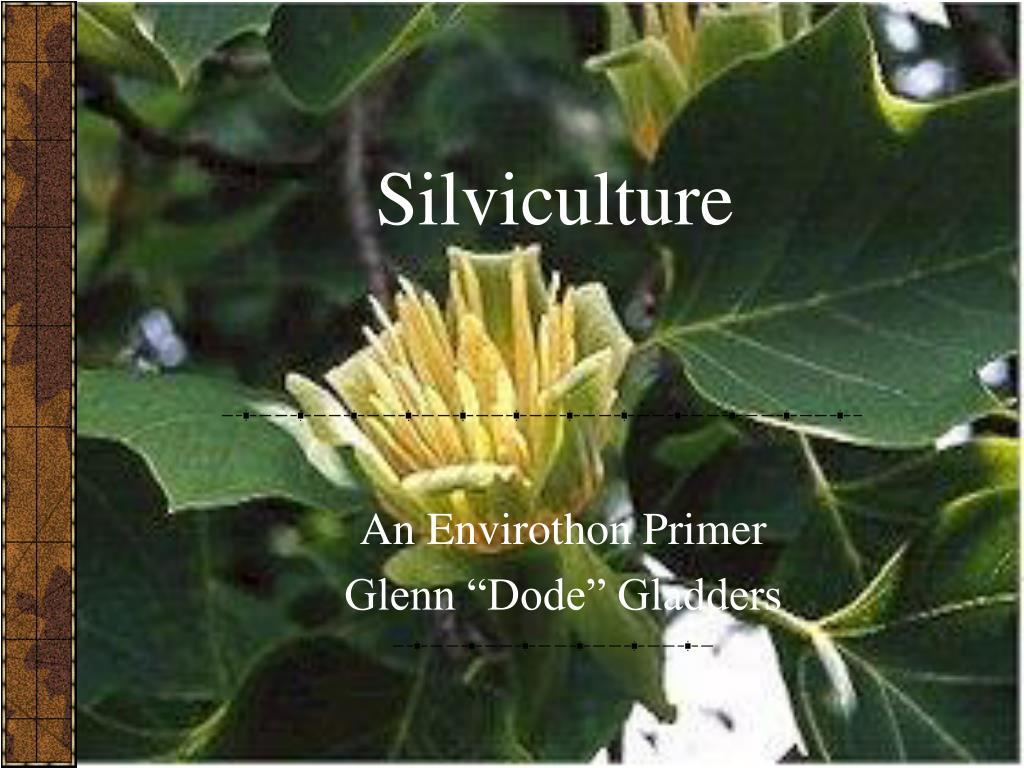 silviculture l.