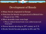 development of breeds