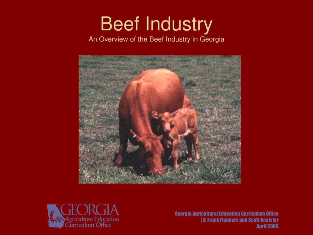beef industry an overview of the beef industry in georgia l.
