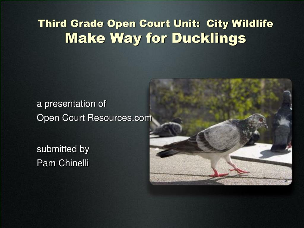 third grade open court unit city wildlife make way for ducklings l.