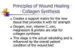 principles of wound healing collagen synthesis
