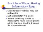 principles of wound healing inflammatory stage