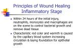 principles of wound healing inflammatory stage3