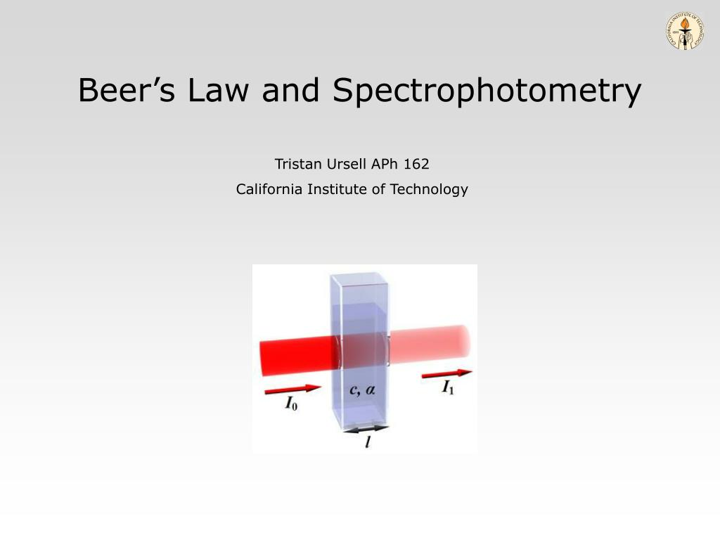 beer s law and spectrophotometry l.