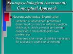 neuropsychological assessment conceptual approach37