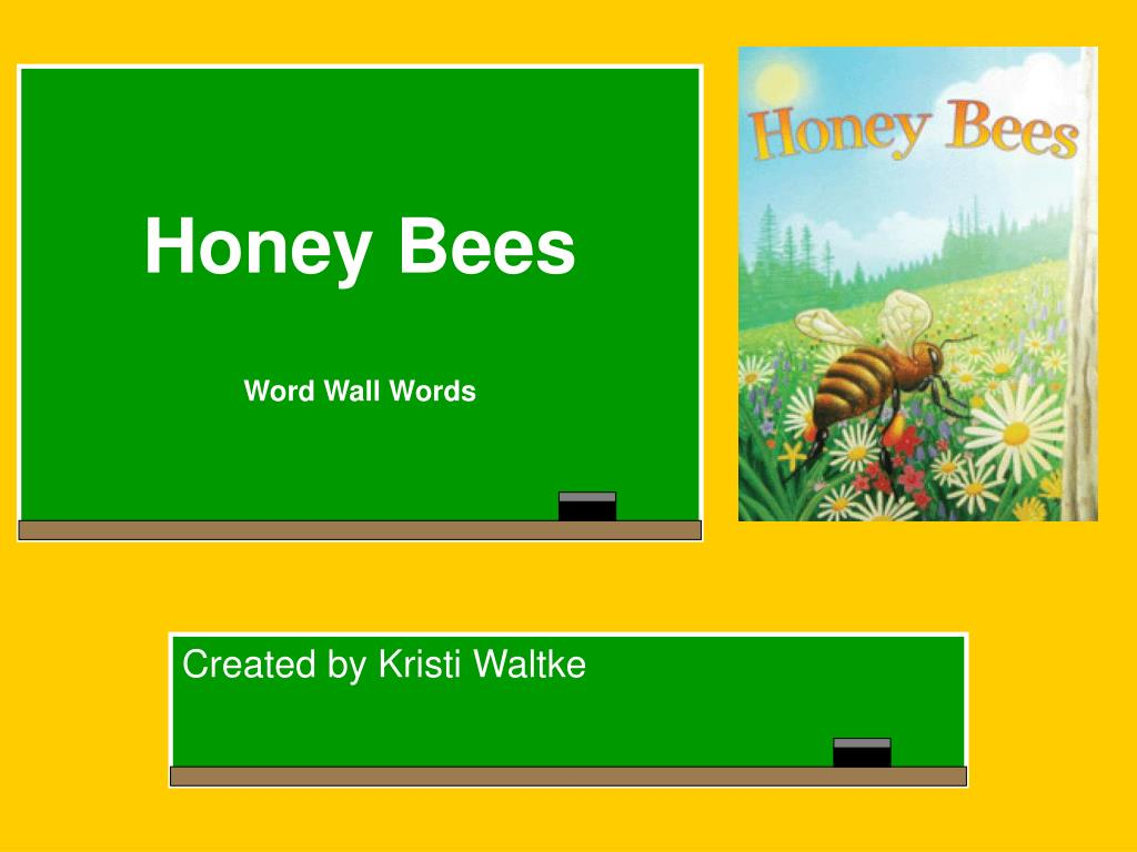 honey bees word wall words l.
