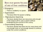 bees rear queens because of one of four conditions12