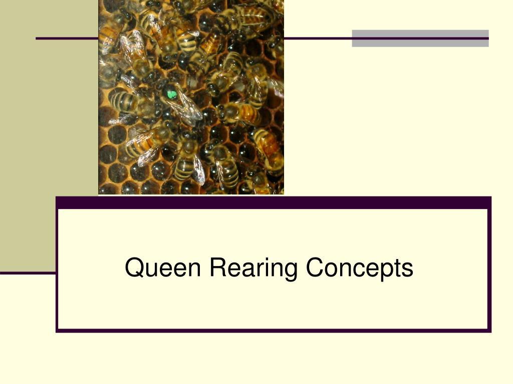 queen rearing concepts l.