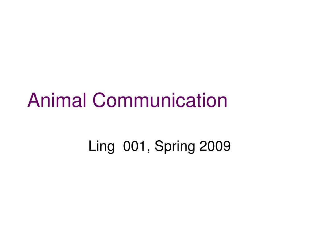 animal communication l.