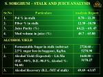 s sorghum stalk and juice analysis