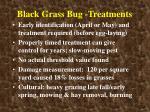 black grass bug treatments
