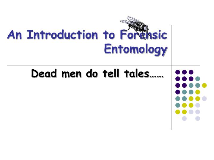 an introduction to forensic entomology n.