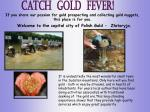if you share our passion for gold prospecting and collecting gold nuggets this place is for you