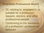 what does professional mean