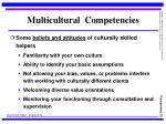 multicultural competencies