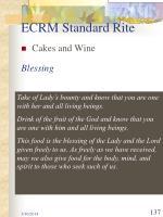 ecrm standard rite137