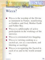 summary what is wicca