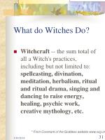 what do witches do