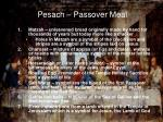 pesach passover meal