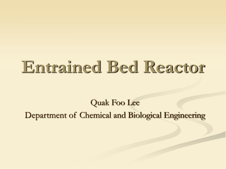 entrained bed reactor n.