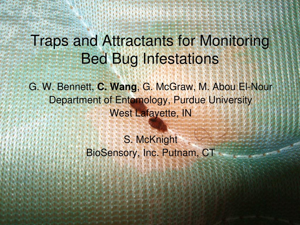 traps and attractants for monitoring bed bug infestations l.
